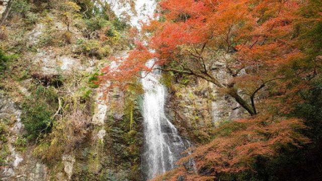 箕面大滝(2018年11月24日時点)