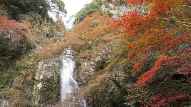 箕面の滝(紅葉)